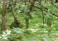 Silhouette: The figures stand almost invisible at first glance, set against the green background of the foliage at the David Marshall Lodge near Aberfoyle in the Trossachs near Loch Lomond, Scotland