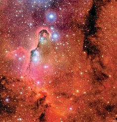 The Elephant's Trunk Nebula sits in star cluster IC 1396, in the constellation of Cepheus.