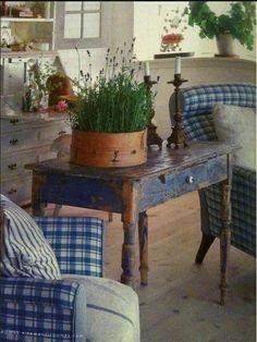 Lavender indoors :)