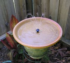Home made solar powered bird bath fountain....... - tribe.net