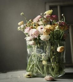 ranunculus, sometimes all one things just works the best