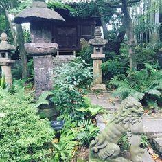 #japanesegarden #serenity