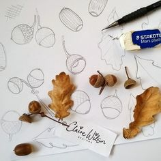 Some early morning autumnal sketches...have a great Friday everyone #autumn #oak #leaves #acorns #pencil #sketches #art #design #clairewilsondesigns #surfacepatternecourse #makeitindesign #abspdupb #surfacepatterndesign #happyfriday