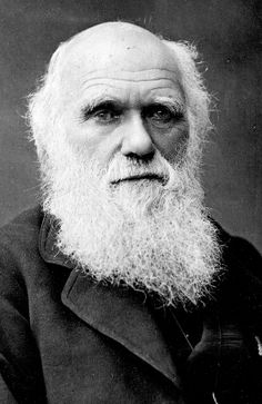 Charles Darwin was an English naturalist and geologist. Known for his evolutionary scientific theory. Charles Darwin, Darwin Theory, Origin Of Species, Believe, Natural Selection, Free Thinker, Marine Biology, Human Condition, Denial