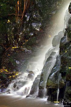 Matai Falls, nz