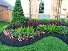 Southern Landscaping, Houston Landscaping, Front House Landscaping, Florida Landscaping, Backyard Pool Landscaping, Tropical Landscaping, Corner Landscaping Ideas, Succulent Landscaping, Landscaping Design