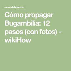 Cómo propagar Bugambilia: 12 pasos (con fotos) - wikiHow