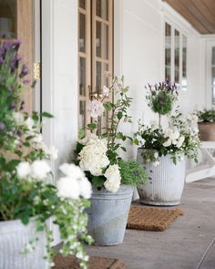 Beautiful summer flower pot and farmhouse porch design by Boxwood Avenue - Lavender topiary, hydrangea, and roses in vintage galvanized pots. garden design backyards The Best Ideas for Creating Stunning Summer Flower Pots - Boxwood Ave Veranda Design, Stunning Summer, Summer Flowers, Fall Flowers, Porch Decorating, Outdoor Patio Decorating, Patio Decorating Ideas On A Budget, Diy Patio, Diy On A Budget