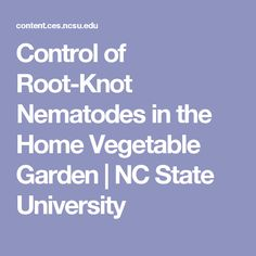 Control of Root-Knot Nematodes in the Home Vegetable Garden | NC State University