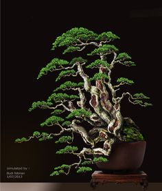 Bonsai Tree Care for Beginners Bonsai Tree Care, Bonsai Tree Types, Indoor Bonsai Tree, Mini Bonsai, Bonsai Plants, Bonsai Garden, Garden Trees, Bonsai Trees, Bonsai Forest