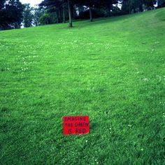 David Shrigley - Imagine the Green is Red (1997)