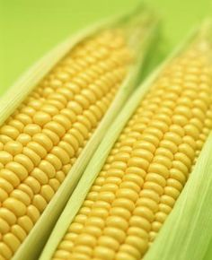 How to Microwave Corn on the Cob With Husks - my grandma swears by this method, and she does make some tasty corn on the cob!