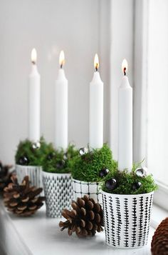 Christmas 2017   Tree Trends and Decorations