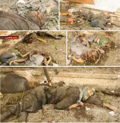 Chiến sự tại Gaza: Palestine 572 chết người, Do Thái 27 người | Sự chuyển đổi Trái đất