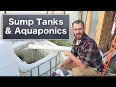 Using Sump Tanks with Aquaponics & Hydroponics - YouTube #hydroponicgardening