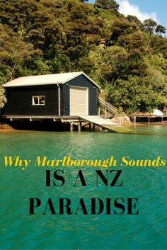 Why Marlborough Sounds is a nz paradise