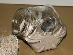 Image result for hamster bathing sand