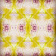 #white #textiles #photoshop #fineartphotography #fineart #art #work #yellow #flowers #fashion #design #photo
