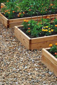 rock pebble walkway with raised beds. nice and clean