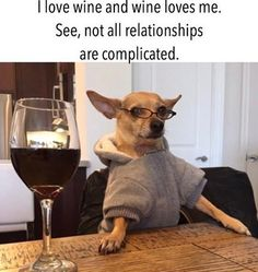 Brandy and Wine. Seeking Some New Wine Ideas? There is so much wine information, between which are best for a certain meal and which work for a certain occasion. Wine Jokes, Beer Memes, Wine Meme, Beer Humor, Wine Funnies, Funny Jokes For Adults, Best Funny Jokes, Funny Pick, Funny Memes