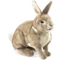 https://www.fatbraintoys.com/toy_companies/folkmanis/cottontail_rabbit_puppet.cfm