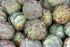 Picking An Artichoke: When And How To Harvest Artichokes - When and how to harvest artichokes in the home garden depends on the type you are growing. If you want to know how to tell when an artichoke is ripe, the information in this article can help. Growing Vegetables In Pots, When To Plant Vegetables, Different Vegetables, Organic Vegetables, Vegetables Garden, Organic Fertilizer, Organic Gardening, Vegetable Gardening, Growing Artichokes