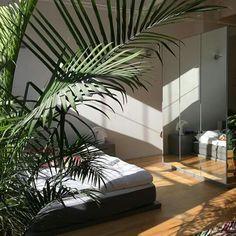 Interior de quarto com plantas