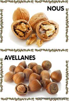 Archivo de álbumes Valencia, Almond, Garlic, Stuffed Mushrooms, Album, Vegetables, Squirrels, Food, Autumn