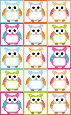 Owl Theme Classroom, Preschool Classroom, Classroom Teacher, Owl Preschool, Classroom Ideas, Classroom Birthday, Classroom Labels, Owl Templates, Label Templates