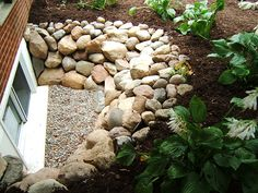 Stone and pea gravel window well, planted edge.