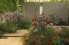 Garden by Sarah Price