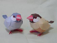 Java sparrow paper model