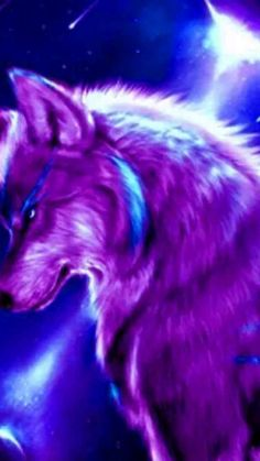 20 best unique wallpapers of wolf in hd