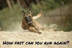 How fast can you run again?