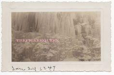 Antique Vintage Photograph~Frozen Waterfall~Winter~Snow~Landscape~January 1947