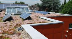 In summer the low growing and diverse blanket of green roof plants are like small air conditioners for the heat sensitive PV elements.