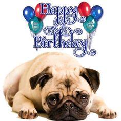 Birthday Pug, Happy Birthday Wishes Cake, Happy Birthday Boy, Birthday Songs, Happy Birthday Quotes, Happy Birthday Images, Animal Birthday, Birthday Greetings, Birthday Cards
