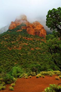 Sedona Red Rocks - AZ