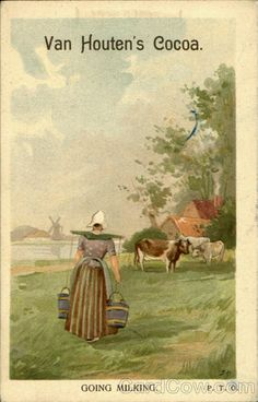 """Van Houten's Cocoa Going milking. Van Houten's Cocoa. Best & Goes Farthest is the original pure soluble Cocoa. Health says: """"None of the numerous Cocoas have as yet equalled this """"inventor's in solubility, agreeable"""