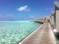 Maldives. Lux South Ari Atoll Maldives Holidays, Villa, Island, Luxury, Outdoor Decor, Travel, Viajes, Islands, Destinations