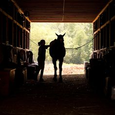 Horse and Girl in the Barn