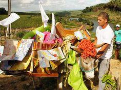 Bibliothèque itinérante à dos d'âne dans la région du Pernambuco, dans le Nordeste au Brésil
