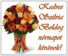 Erika, Happy Birthday, Seasons, Happy Brithday, Urari La Multi Ani, Seasons Of The Year, Happy Birthday Funny, Happy Birth