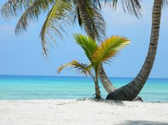 Relax is time to be you. Welcome to Dominican Republic -Image Isla Saona