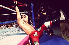 Shawn Michaels. The Winner of The 1995 Royal Rumble