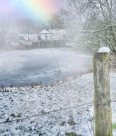 snow, mist and sun   ~wow
