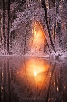 winter lake sunset by Andrei Reinol. All Nature, Amazing Nature, Winter Pictures, Nature Pictures, Beautiful Sunset, Beautiful World, Natur Wallpaper, Landscape Photography, Nature Photography