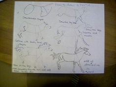 How to draw a horse. If you can't read the words, then follow the pictures.