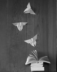 The Butterfly Book by Ymntle-Aleoni.deviantart.com on @DeviantArt
