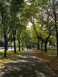 A Fall Stroll - Boston